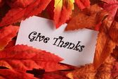 "Card with ""Give Thanks"" on autumn colorful leaves. — Stock Photo"