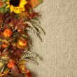Stock Photo: Sunflower, autumn leaves and fruits on burlap background