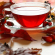 Cup of fruit rose-hip tea and autumn leaves and fruits on a table — Stock Photo #28223449