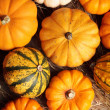 Stock Photo: Top view of pumpkins on straw