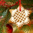 Christmas gingerbread decoration on a tree — Stock Photo #28638219