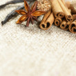 Cinnamon sticks, anise stars, nutmegs and vanilla beans — Stock Photo