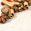 Cinnamon sticks, anise stars and nutmegs — Stock Photo