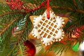 Christmas gingerbread decoration on a tree — Stock Photo