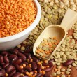 Various pulses - chickpea, lentil and beans — Stock Photo