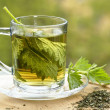 Nettle tea in glass, fresh and dry nettle. — Stock Photo