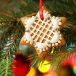 Christmas homemade gingerbread decoration on a tree. — Stock Photo #29362969