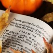 Open Bible and autumn leaves. — Stock Photo