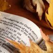 Open Bible and autumn leaves. — Stock Photo #31956041