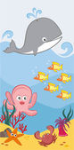 Cute sea animals — Stock Vector