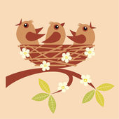 Little birds sitting — Stock Vector