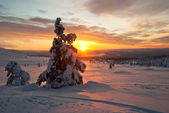 Sunset in winter in Finland — Foto Stock