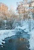 Winter landscape with the river — Stockfoto