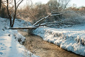 Winter river and a bridge over it — Foto Stock