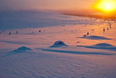 Sunset in the tundra — Stok fotoğraf