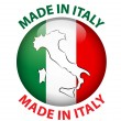Made in Italy — Stock Vector #29684857