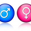 Stock Vector: Male female icons