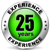 Twenty five years experience — Stock Vector