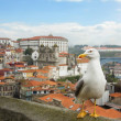 Nice Seagull on the background of panorama of Porto, Portugal. — Stock Photo