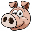 Stock Vector: Pig face