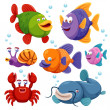 Fish collection — Stock Vector #42537541