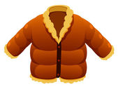 Jacket — Stock Vector