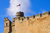 Lincoln castellations — Stock Photo