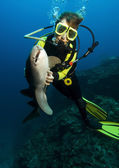 Diver with nurse shark — Stock Photo