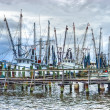 Fishing fleet — Stock Photo #28749197