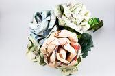 花卉 — 图库照片