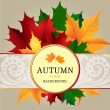 Autumn background grey — Stock Vector #32749261