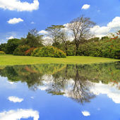 Lake in the park and blue sky — Photo