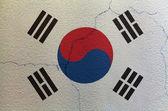 Bandiera della corea del sud sul muro — Foto Stock