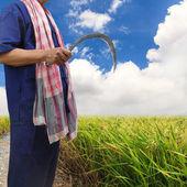 Agricultor segurando uma foice — Fotografia Stock