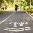 Foto Stock: Bike lane