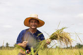 Asian farmer — Stock Photo