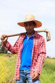 Agriculturist — Stock Photo