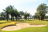 Hermoso campo de golf — Foto de Stock