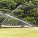 Watering — Stock Photo