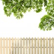 Stock Photo: White fences