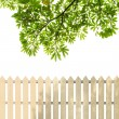 Stock Photo: White fences with green leaves