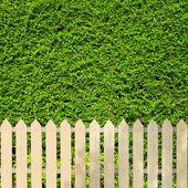 White fences — Stock Photo