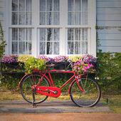 Rode vintage fiets — Stockfoto