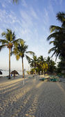 Playa dominicana — Foto de Stock