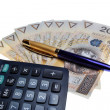 Stock Photo: Polish money salary calculator and a pen