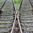 Railway track — Stock Photo #29498677