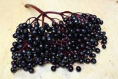 Elderberry black fruit — Stock Photo