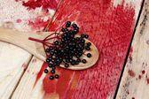 Elderberry fruit — Stock Photo