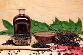 Black elderberry — Stock Photo