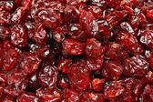 干酸果蔓果 — 图库照片